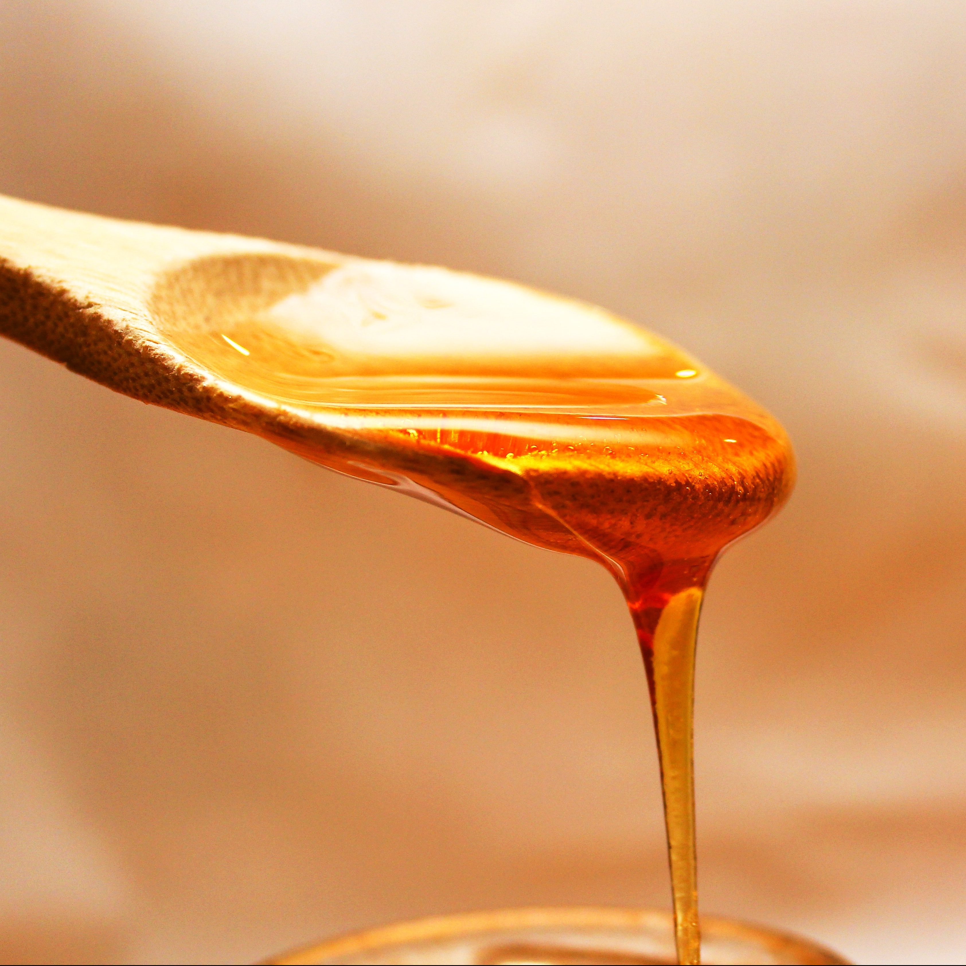 Honey cures eight year blepharitis